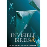 INVISIBLE BIRDS 改