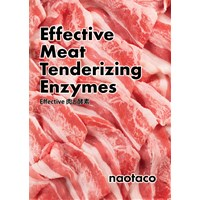 Effective Meat Tenderizing Enzymes Effective 肉と酵素